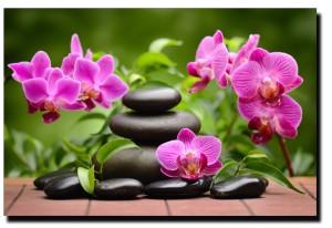 a zen arrangement